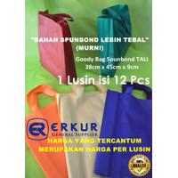 ( Tali 38x45x9cm ) Goody Bag / Goodie Bag / Eco Bag / Tote Bag Polos