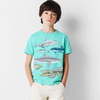 Kaos Anak Laki-laki Gap Boy Shirt Dark Green (10-13 thn)