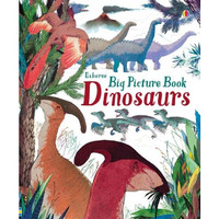 Usborne Big Picture Book Dinosaurs. Buku Anaka Import
