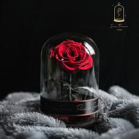 Scarlet Red Petite de Rose | Bunga Mawar | Eternal Rose | Kado Unik