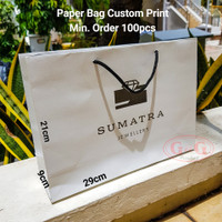 29x9x21 Paper Bag Duplex Custom Print / Shopping Bag Custom Print