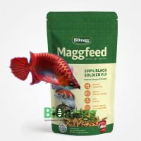 Supplemen Pakan Makanan Ikan Arwana AROWANA Agresif Tinggi Protein