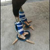 sepatu ayamsepatu untuk bubul