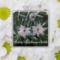 Anting Silver Bunga Akrilik