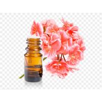 Anti Stress Not Dopa Not THC Not Yeyo - Geranium Essential Oil 15 ml