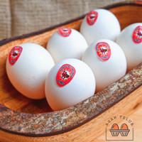 Telur Ayam Kampung Omega Super / butir
