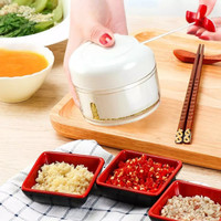 Food Chopper Mini