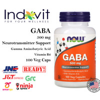Now Foods GABA 500 mg 100 Veg Cap Now Gaba 500 MG Tidur Lelap