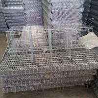 kandang batrai ayam petelur medium