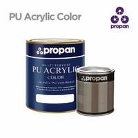 PROPAN PU PUSS 760 2K (Sanding Sealer) - 1 Liter Set