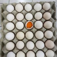 Telur Ayam Kampung Omega / butir