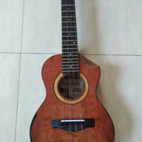 Ukulele Tenor All Solid with Fishman