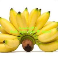 pisang muli atau pisang lampung 1 sisir