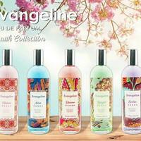 parfum evangeline batik/parfum murah/parfum wanita - Evolve
