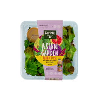 Salad Pack Hidroponik / Asian Garden Salad - Eat Me