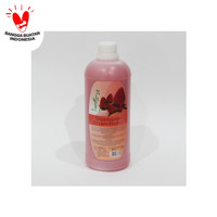 ACL Shampoo Strawberry 24x1000ml ( 1 Karton )