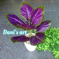 set tanaman daun ungu/ tanaman palsu/ tanaman hias/ bunga plastik