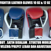 fighter boxing glove