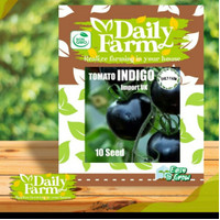 Daily Farm - Benih Bibit Tomato Indigo Tomat Ungu Reapack Import