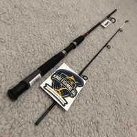 Joran Daiwa Jupiter Power Tip 150