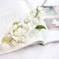 Bunga Simulasi - Bunga Sakura Sutra Branch P52 - Putih