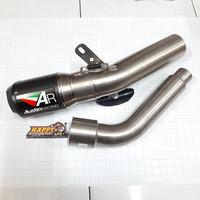 Knalpot AUSTIN RACING Kawasaki Z800 GP1R Black Tip/Carbon Can