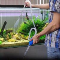 Alat penguras sifon cleaner pump aquarium arwana cupang koi aquascape