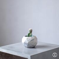 Pot Kaktus / Reatha Cactus Pot / Vas Bunga