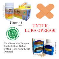 Gamat Gold Ekstrak Ikan Gabus Obat Herbal Luka Pasca Operasi Cesar