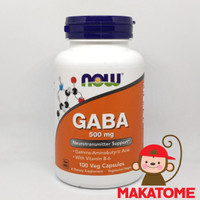 Now Foods GABA 500 mg 100 Veg Capsules Food Gamma Aminobutyric acid B6