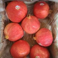 Buah Delima Merah Red Pomegranate Sehat Fresh Import Harga Grosir