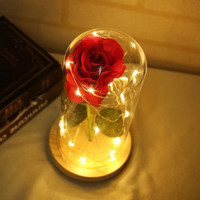 Bunga Mawar Lampu LED Dekorasi Beauty and The Beast Rose