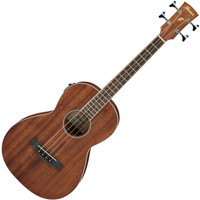 Ibanez PNB14E OPN Acoustic Electric Bass 4 String