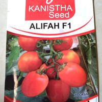 BENIH TOMAT ALIFAH KANISTHA SEED IMPORT SUPER PREMIUM F1