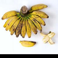 pisang gepok buat kolak