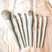 Make Up Brush Set of 8 with Pouch