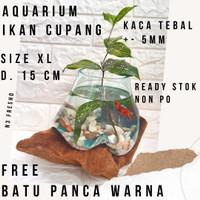 Aquarium Ikan Cupang Kaca Aquascape Terrarium Glass Akar Kayu Unik