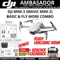 DJI MINI 2 / MAVIC MINI 2 BASIC & FLY MORE COMBO - FLY MORE COMBO