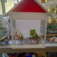 aquarium mini unik akrilik