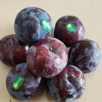 buah plum fresh segar 1 kg