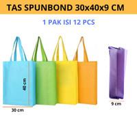 TAS KAIN / GOODIE BAG / SPUNBOND HANDLE 30 X 40 30X40 @12PCS - Biru