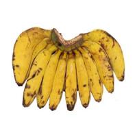 SayurHD buah segar pisang raja 1 sisir
