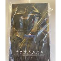 Hot Toys Hawkeye deluxe version endgame 1/6