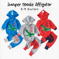 Baju Setelan Anak Bayi Laki Jumper Hoodie Alligator set 3-9 bulan