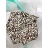 Batu alam panca warna tanaman hias kemasan 1 kg