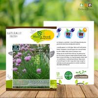 Benih Sayuran Daun Bawang Common Chives - Haira Seed