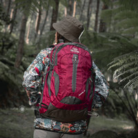 Tas Ransel / Daypack Co-trek Jempang 40L Include Rain Cover Terlaris