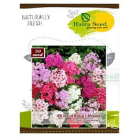 Benih Bibit Bunga Hias Phlox Annual Mixed Haira Seed