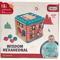Mainan edukasi bayi 6 sisi activity cube - KK