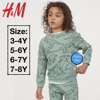 H&M Boy Sweatshirt Anak Laki-Laki Dino Turquoise Branded Original